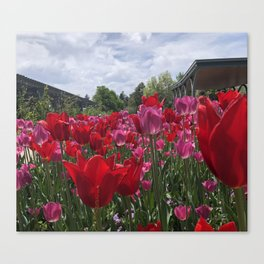 Reminiscent of the Netherlands Canvas Print