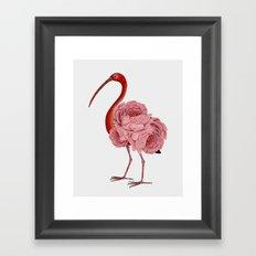 flagon,fling,flan,flamingo Framed Art Print