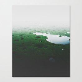 Sempai Heights Canvas Print
