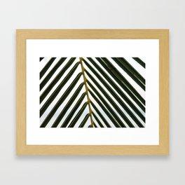 Plam Leaf Framed Art Print