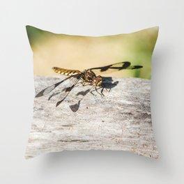 Hello Dragonfly Throw Pillow