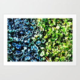 Hot or cold Art Print