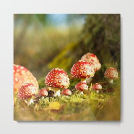 Beautiful but toxic - Fly agaric - Amanita - Autumn illustration #decor #society6 #buyart Metal Print