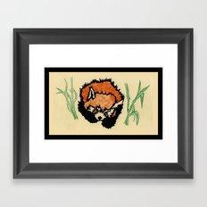 Red Panda Nap  Framed Art Print
