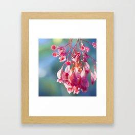 Angel Wing Begonia Framed Art Print