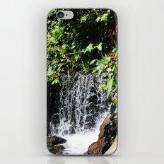 Take Me There iPhone & iPod Skin