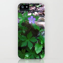 Flowers by the Falls iPhone Case