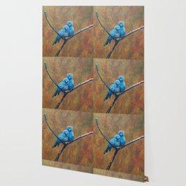 Canary Love Birds Wallpaper