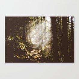 Breams  Canvas Print