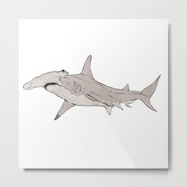 Great Hammerhead Shark Metal Print