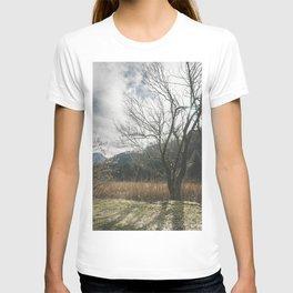 The big leafless tree T-shirt