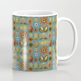 Ernst Haeckel Ascidiae Sea Squirts Teal Background Coffee Mug