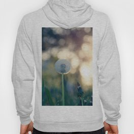 Dandelion blossom defocused seed head Hoody
