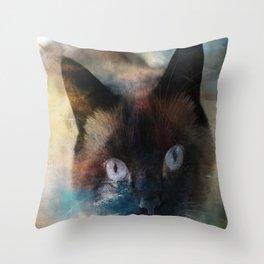 Thru The Looking Glass Throw Pillow