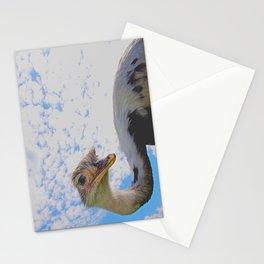 Nandu Stationery Cards
