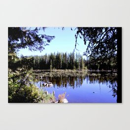 Trillium Lake Canvas Print