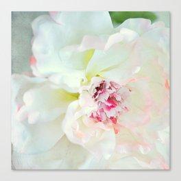 White waterflower Canvas Print