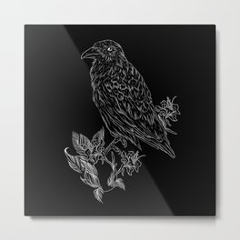 Raven b Metal Print