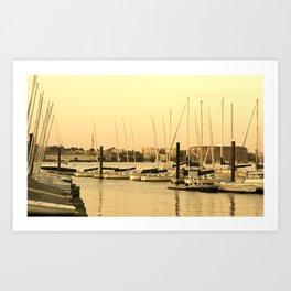 Harbor Sails Art Print