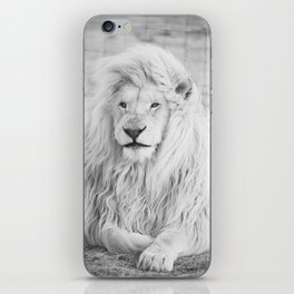 Albino Lion (Black and White) iPhone Skin