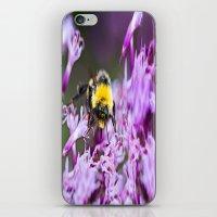 bee iPhone & iPod Skins featuring Bee by Dora Birgis