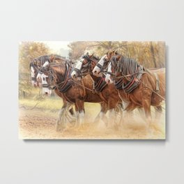 Autumn Harrow Metal Print