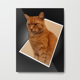 Out of Bounds Cat Metal Print
