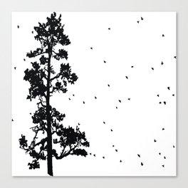 Pine Tree Flock in Bend, Oregon by Seasons K Designs Canvas Print