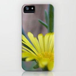Ice Plant Flower iPhone Case
