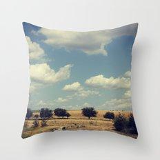 Wisconsin Summer Throw Pillow