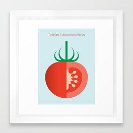 Vegetable: Tomato Framed Art Print