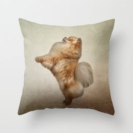 Dog Pomeranian Spitz Throw Pillow