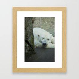 Missing the North Framed Art Print