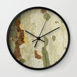 London plane tree Wall Clock