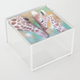 Love Is All Around Us Acrylic Box