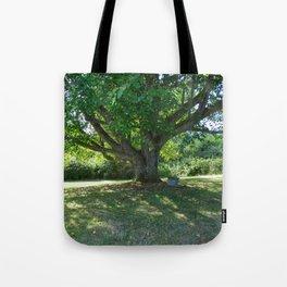 Garden Bench Vashon Tote Bag