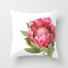 Dark Pink Protea Throw Pillow