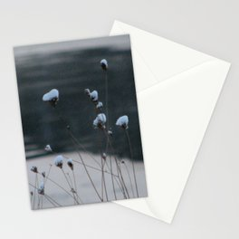 Snow-Covered Buds Stationery Cards