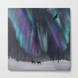 Northern Winter Metal Print