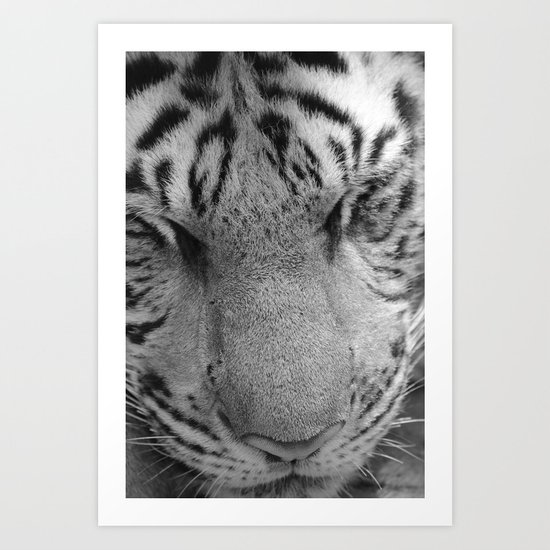 Le Tigre Pendant Sa Sieste Art Print