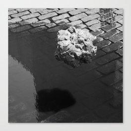 Floating Blob Canvas Print
