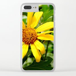 yellow daisys Clear iPhone Case