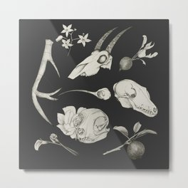 Bones and Botanical Sketches Metal Print