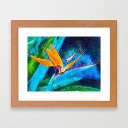Bird Of Paradise Plant art Framed Art Print