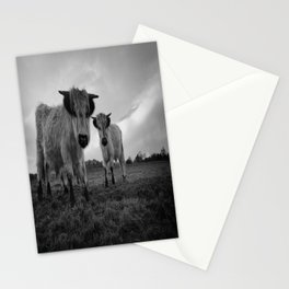 High Park Cow Mono Stationery Cards