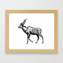 Kudo Framed Art Print