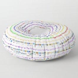 Genome Circles 3 Floor Pillow