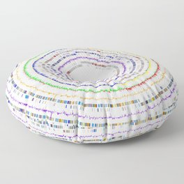 Genome Circles 3 Floor Pillow