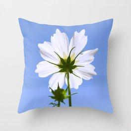 White Cosmos Flower Throw Pillow