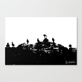 Birds on the shore Canvas Print